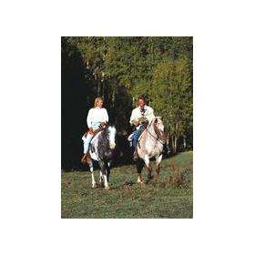 Ridge Top Village and Ridge Top Summit at Shawnee Resort — - Horseback riding nearby