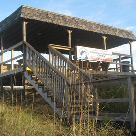 Covered pavilion at the beach