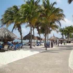 Divi Aruba Phoenix Beach Resort Beach