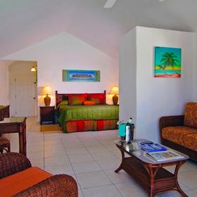 The Verandah Resort & Spa Suite
