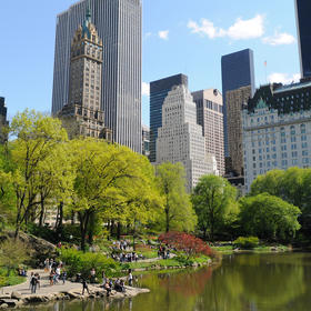 Central Park in May (3 block walk from resort)