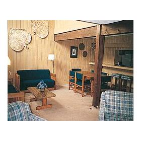 Stony Court at Bryce Mountain - Unit Living Area