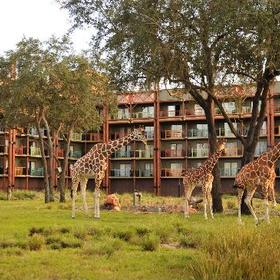 Disney's Animal Kingdom Villas - Kidani Village Exterior