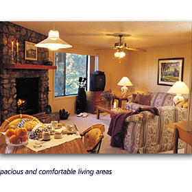 Crowne Plaza Resorts and Vacation Villas of Asheville - Unit Living Area