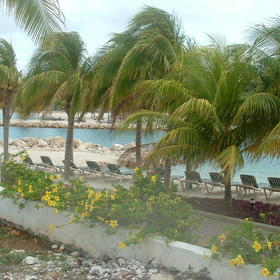 The Sea Aquarium Resort - Beach