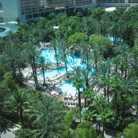 HGVC at the Flamingo - Pools