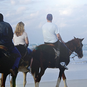 Cabo Azul Resort & Spa - horseback riding