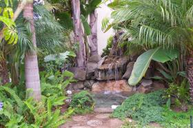 Sand Pebbles Resort - Tropical Waterfall