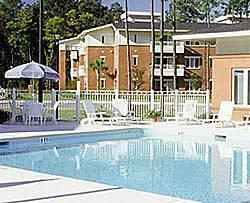 Wild Wing Resort - Pool