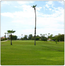 Indian Palms Intervals - Golf Course