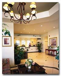 Peacock Suites Resort - Lobby
